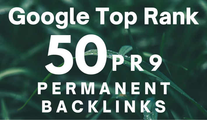 I WILL GIVE YOU PERMANENT 50 SEO LINK BUILDING BACKLINKS, FOR GOOGLE RANKING, FiverrBox