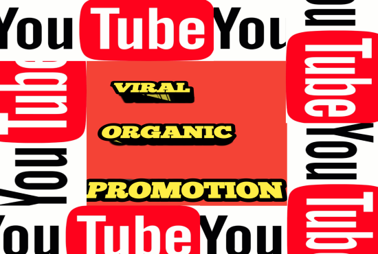I will do organic and massive youtube video promotion, FiverrBox