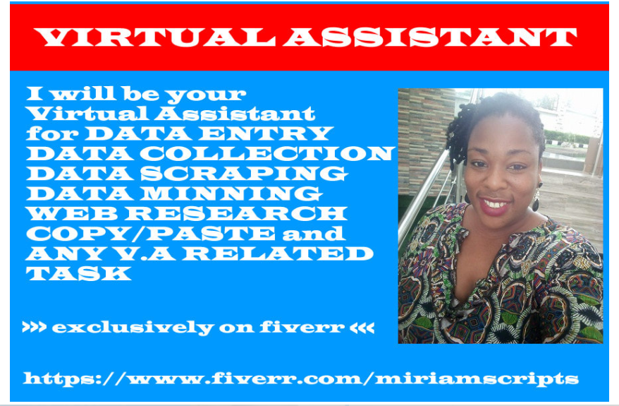 I will be your virtual assistant for data entry and web research, FiverrBox