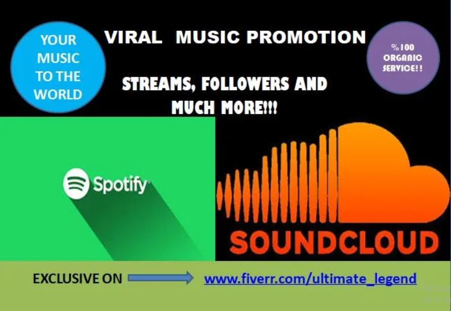I will do organic and viral spotify, soundcloud music promotion, FiverrBox