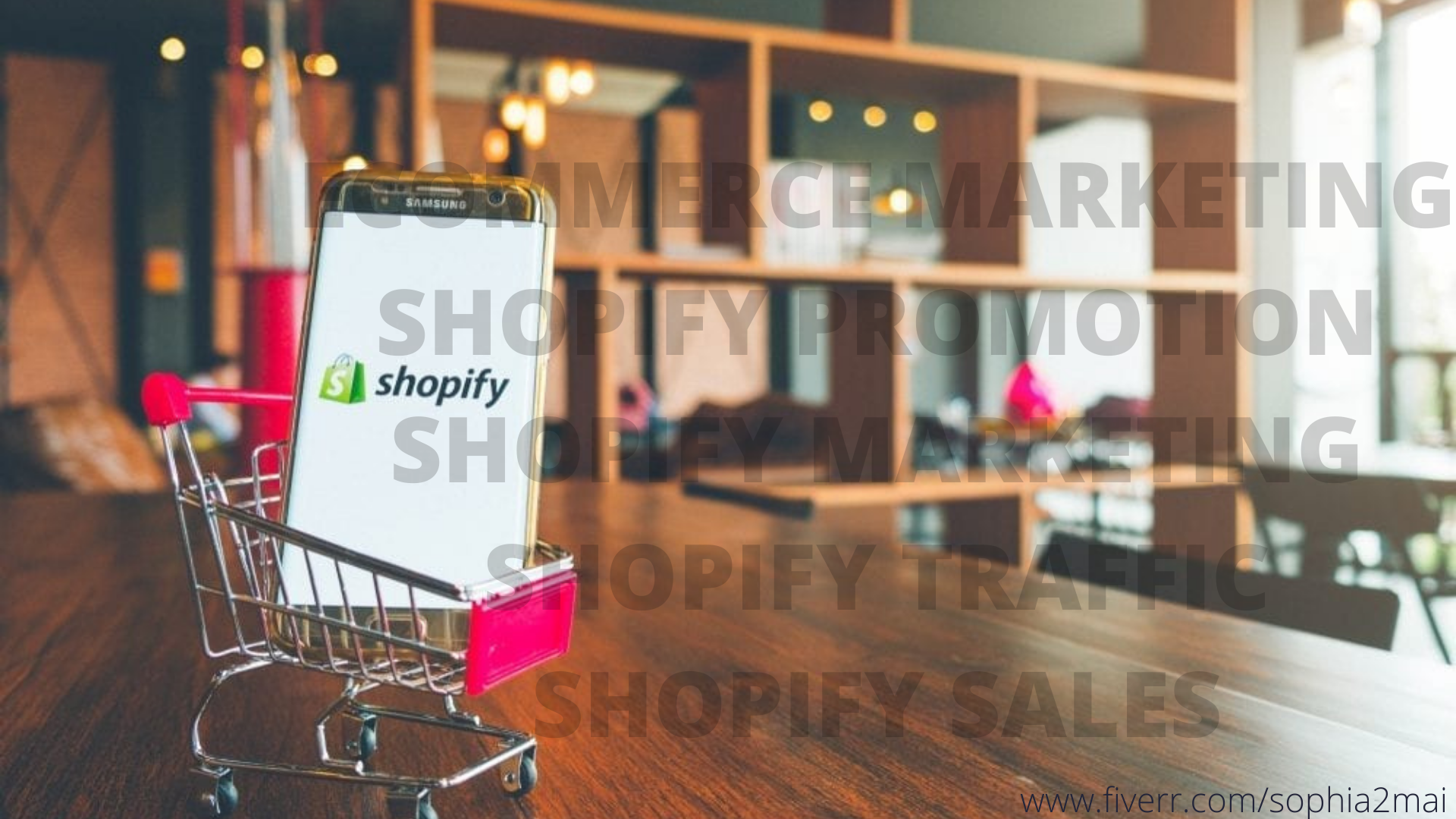 I will do roi guarantee sales shopify marketing,shopify promotion,shopify traffic sales, FiverrBox