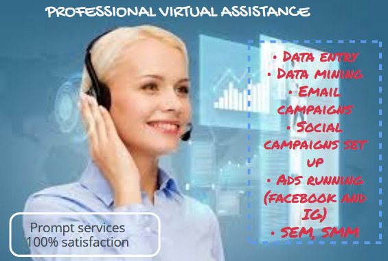 I will be your professional virtual assistance, personal assistance, FiverrBox
