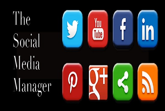 I will be your social media manager and content creator, FiverrBox