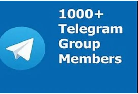 I will do an organic telegram promotion and community management, FiverrBox