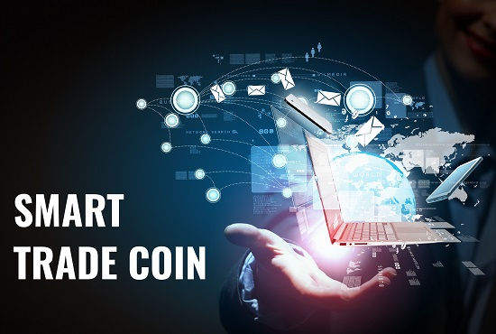 I will develop coin similar to bitcoin and ethereum, FiverrBox