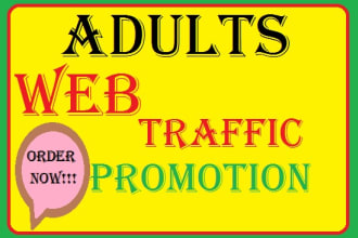 I will drive 2m organic traffic to your website, FiverrBox