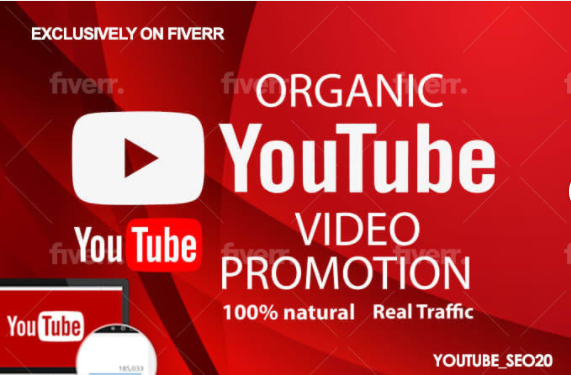 I will do an organic promotion to your youtube channel for monetization, FiverrBox