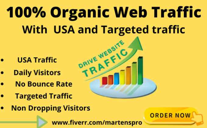 I will drive real, organic web traffic for 30 days, FiverrBox